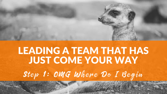 On Leading Teams that you have just come your way…Step 1